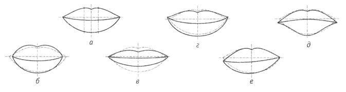несколько типов формы губ: