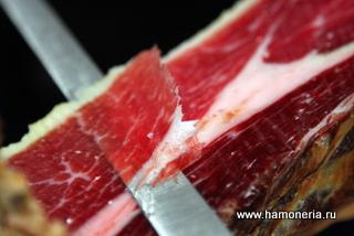 паразиты в сыром мясе опасные для человека